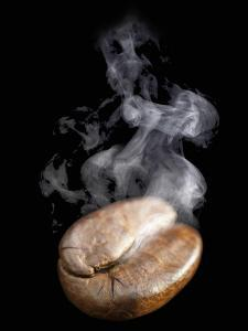 A Freshly Roasted Coffee Bean with Steam by Shawn Hempel