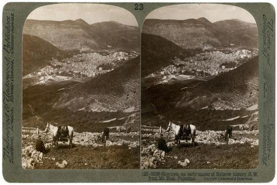 Shechem, South-West from Mount Ebal, Palestine, 1900s-Underwood & Underwood-Giclee Print