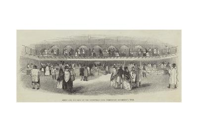 Sheep and Pig Show of the Smithfield Club, Wednesday, 7 December 1842--Giclee Print