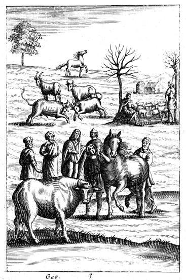 Sheep, Cattle, Horses and Goats, 18th Century--Giclee Print