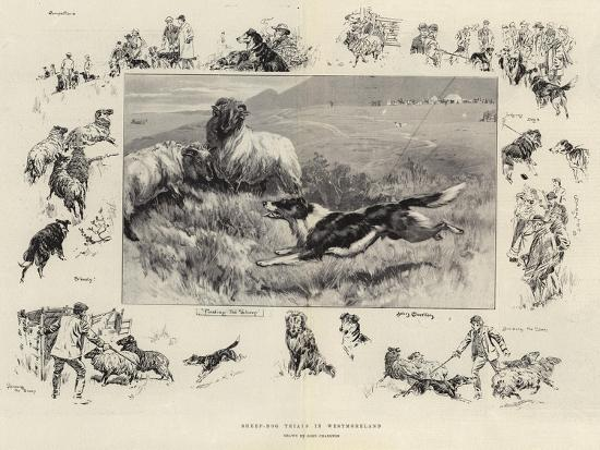 Sheep-Dog Trials in Westmoreland-John Charlton-Giclee Print