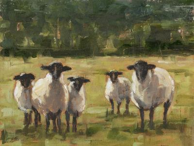 Sheep Family I-Ethan Harper-Premium Giclee Print