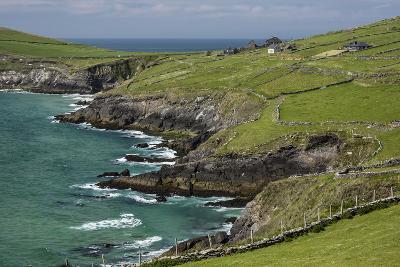 Sheep Fences and Rock Walls Along the Dingle Peninsula-Michael Nolan-Photographic Print