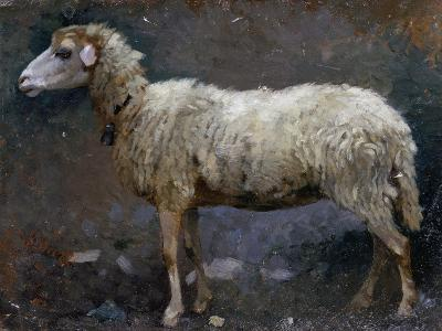 Sheep in Profile-Stefano Bruzzi-Giclee Print