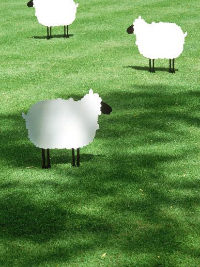 Sheep on Lawn as Decoration, Perfect Striped Lawn-Georgia Glynn-smith-Photographic Print