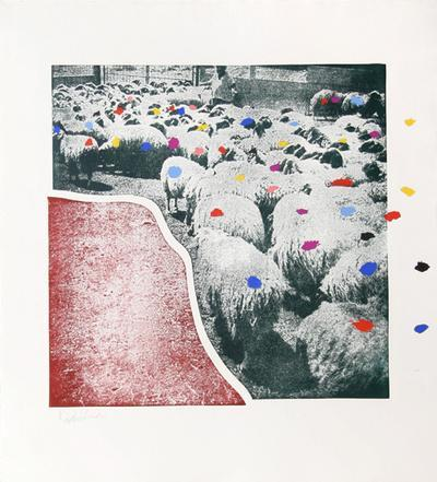 https://imgc.artprintimages.com/img/print/sheep-portfolio-5_u-l-f6b2f80.jpg?p=0