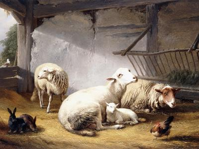 Sheep, Rabbits and a Chicken in a Barn, 1859-Eugene Joseph Verboeckhoven-Giclee Print