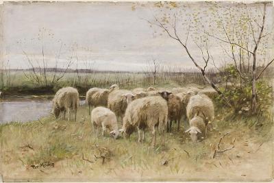 Sheep-Francois Pieter Ter Meulen-Giclee Print