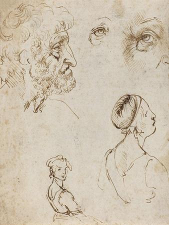 https://imgc.artprintimages.com/img/print/sheet-of-studies-recto-by-leonardo-da-vinci_u-l-pyjc2i0.jpg?p=0