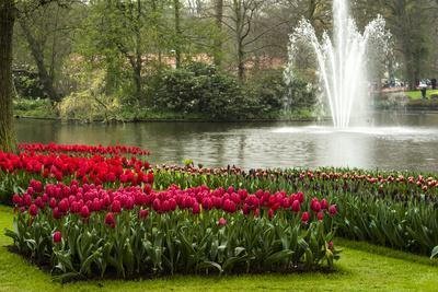 A Manicured Flower Garden of Tulips with a Lake and Water Fountain