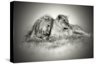 Lioness and Son Sitting and Nuzzling in Botswana Grassland, Africa
