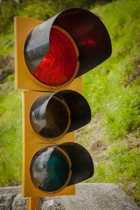 Stop Light on Side of Country Road by Sheila Haddad