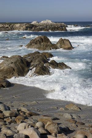 Waves Along Monterey Peninsula, California Coast, Vertical Image