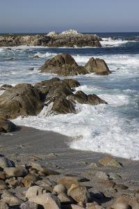 Waves Along Monterey Peninsula, California Coast, Vertical Image by Sheila Haddad
