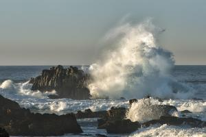 Waves Crashing on Rocks at Sunset, Asilomar State Beach, California by Sheila Haddad