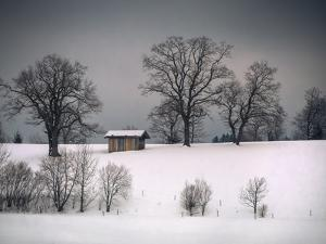 Winter Scene, Hill and Trees, Hut and Foreboding Sky by Sheila Haddad