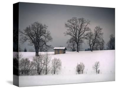Winter Scene, Hill and Trees, Hut and Foreboding Sky