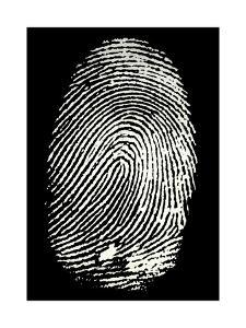 Enlarged Fingerprint by Sheila Terry