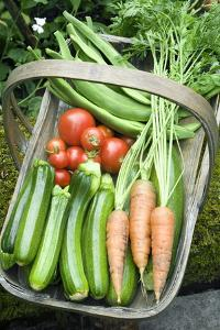 Home-grown Organic Vegetables by Sheila Terry