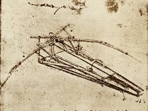 Leonardo's Ornithopter by Sheila Terry