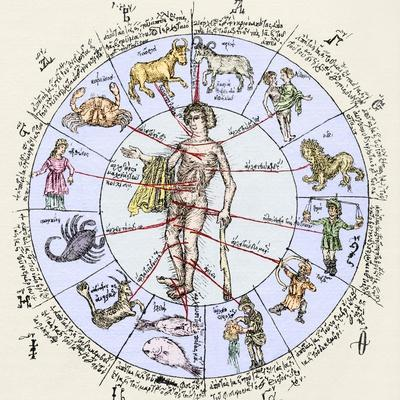 Medical Zodiac, 15th Century Diagram