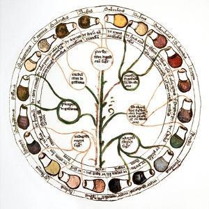 Medieval Urine Wheel by Sheila Terry