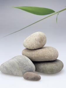 Pile of Stones by Sheila Terry