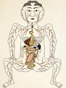 Pregnancy Anatomy, 15th Century Artwork by Sheila Terry