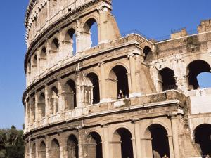 The Colosseum, Rome, Lazio, Italy by Sheila Terry