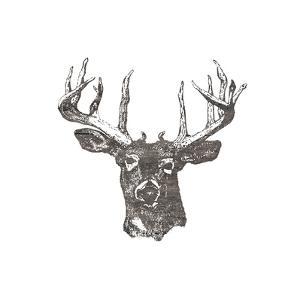 Big Buck by Sheldon Lewis
