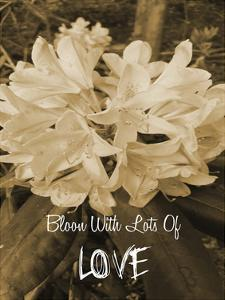Bloom With Love by Sheldon Lewis