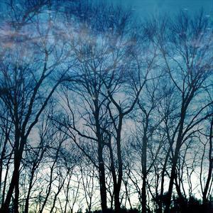 Blue Mountain by Sheldon Lewis