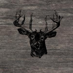 Buck by Sheldon Lewis