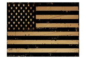 Gold And Black America by Sheldon Lewis