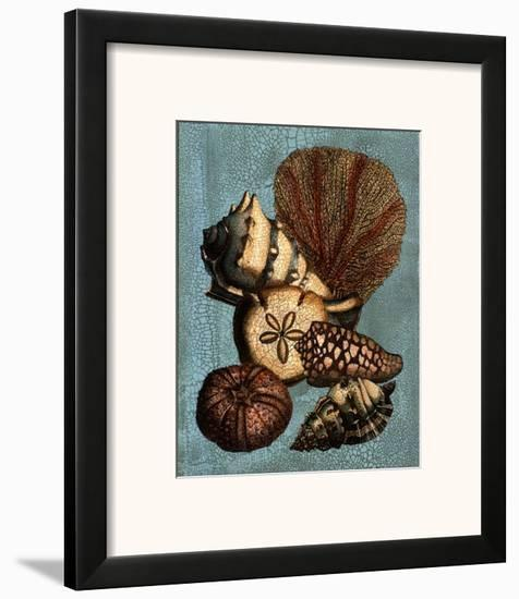 Shell and Coral Collection on Aqua II--Framed Art Print