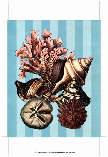 Shell and Coral on Aqua I--Art Print