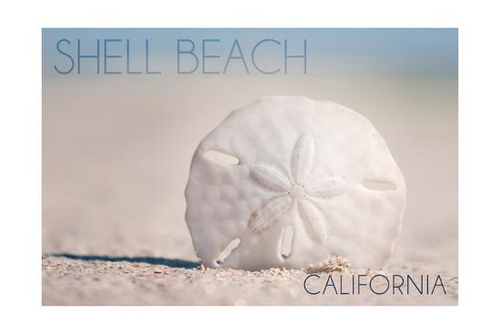 Shell Beach, California - Sand Dollar and Beach-Lantern Press-Art Print