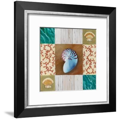 Shell Collage III-David Marrocco-Framed Art Print