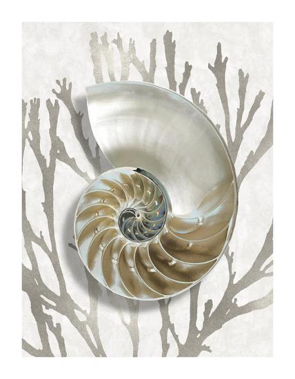 Shell Coral Silver II-Caroline Kelly-Giclee Print