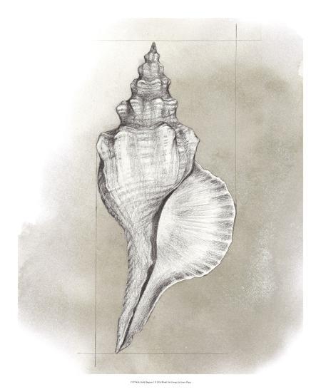 Shell Diagram I-Grace Popp-Art Print
