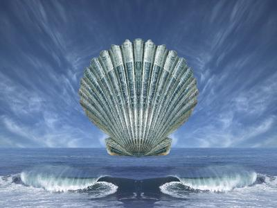 Shell Floating Above Ocean Tide with Blue Sky-Diane Miller-Photographic Print