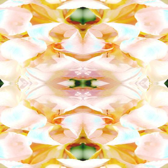 Shell Game-Rose Anne Colavito-Art Print