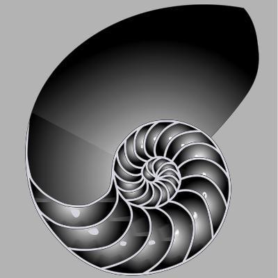 Shell Half-williammpark-Art Print