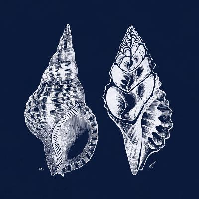 Shell Negative I-N^ Harbick-Art Print