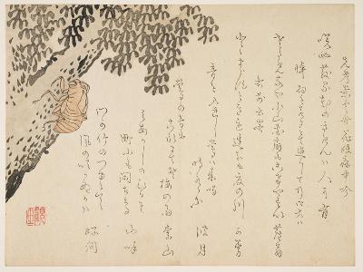 Shell of a Cicada, C.1848-53- Kangyoku-Giclee Print