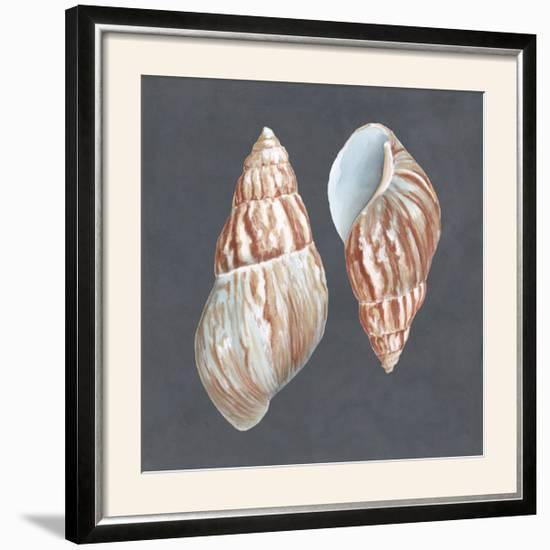 Shell on Slate V-Megan Meagher-Framed Photographic Print