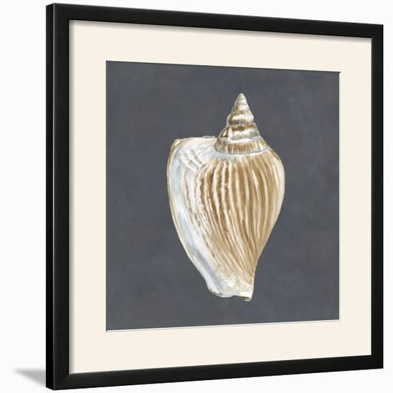 Shell on Slate VI-Megan Meagher-Framed Photographic Print