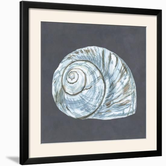 Shell on Slate VIII-Megan Meagher-Framed Photographic Print