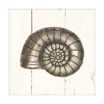 Shell Sketches I Shiplap-Wild Apple Portfolio-Art Print
