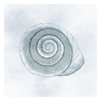 https://imgc.artprintimages.com/img/print/shell-storm_u-l-f9a75e0.jpg?p=0